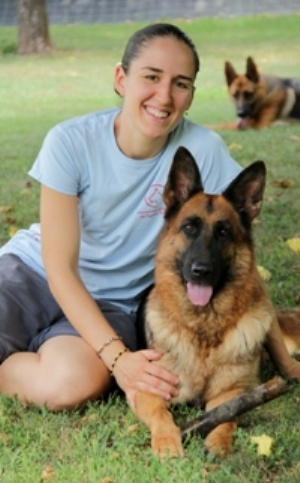 German Shepherd dogs breeding