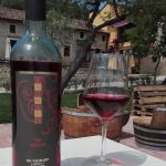 CANTINE APERTE – Open Wineries Event at Da Sagraro Winery