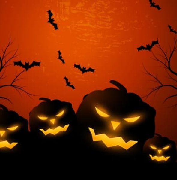 Halloween in Piazza dei Signori – Vicenza