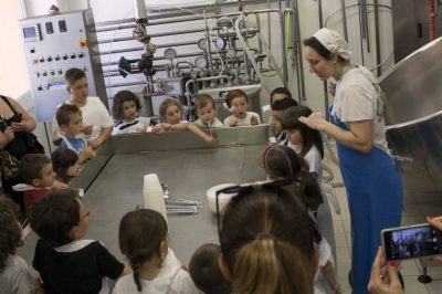Cheese making workshop with kids