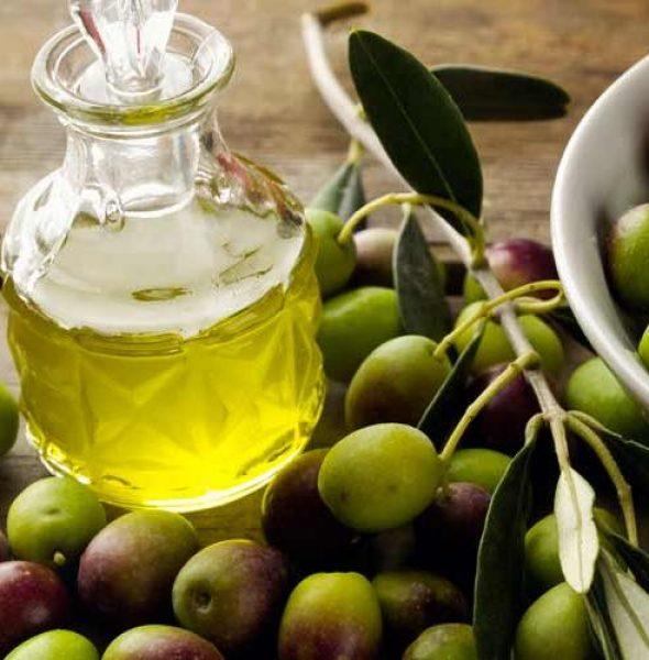 Novello Olive Oil Festival in Arquà Petrarca