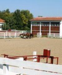 Ropes Ranch Horse Riding in Grisignano di Zocco