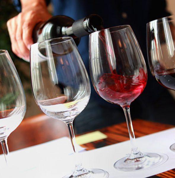 """Novello """"New"""" Wine 2019 – Tasting Day"""