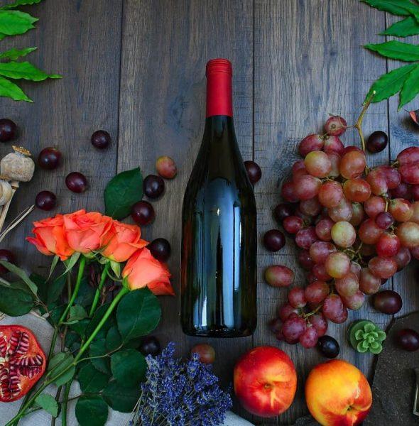 Last taste of Fall in the Euganean Hills – Wine tasting & lunch