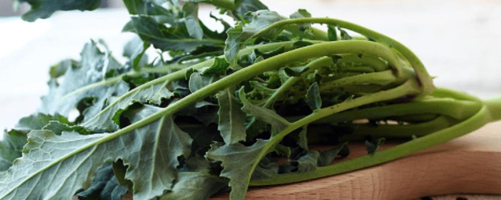 """The """"fiolaro"""" broccoli of Creazzo – Vicenza"""